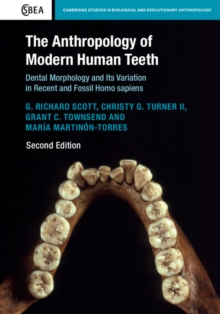 The Anthropology of Modern Human Teeth : Dental Morphology and Its Variation in Recent and Fossil Homo sapien, Hardback Book