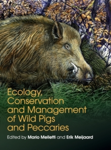 Ecology, Conservation and Management of Wild Pigs and Peccaries, Hardback Book