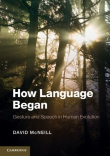 How Language Began : Gesture and Speech in Human Evolution, Paperback Book