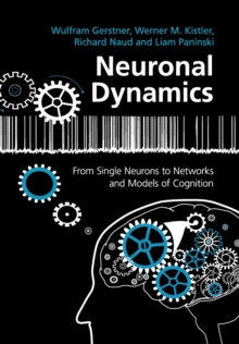 Neuronal Dynamics : From Single Neurons to Networks and Models of Cognition, Paperback / softback Book