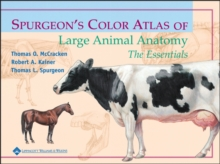 Spurgeon's Color Atlas of Large Animal Anatomy : The Essentials, EPUB eBook