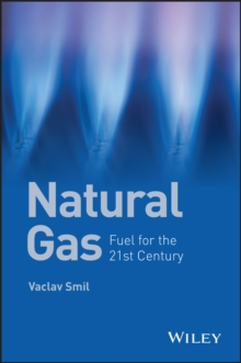 Natural Gas : Fuel for the 21st Century, Paperback Book