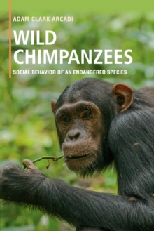 Wild Chimpanzees : Social Behavior of an Endangered Species, Paperback Book