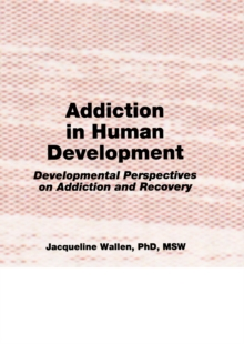 Addiction in Human Development : Developmental Perspectives on Addiction and Recovery, PDF eBook