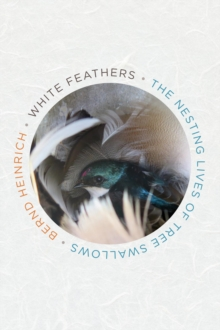 White Feathers : The Nesting Lives of Tree Swallows, EPUB eBook