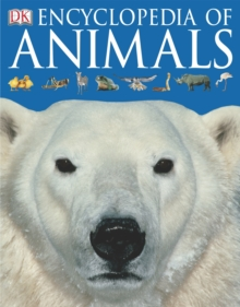 Encyclopedia of Animals, Paperback / softback Book