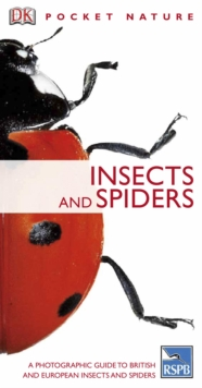 Insects, PDF eBook