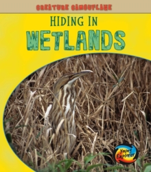 Hiding in Wetlands, Paperback Book