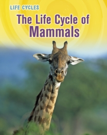 The Life Cycle of Mammals, Hardback Book