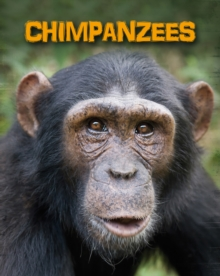 Chimpanzees, Paperback / softback Book