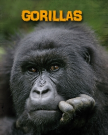 Gorillas, Paperback / softback Book