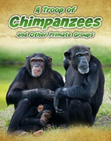 A Troop of Chimpanzees : and Other Primate Groups, Paperback / softback Book