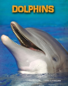 Dolphins, Paperback Book