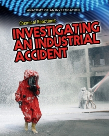 Chemical Reactions : Investigating an Industrial Accident, Paperback / softback Book
