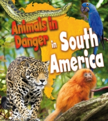 Animals in Danger in South America, Paperback / softback Book