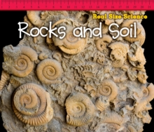 Rocks and Soil, Paperback / softback Book