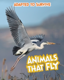Adapted to Survive: Animals that Fly, Paperback Book