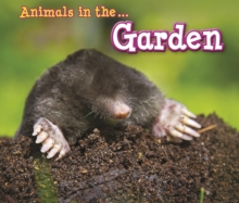 Animals in the Garden, Hardback Book