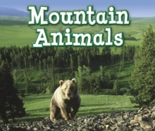 Mountain Animals, Paperback Book