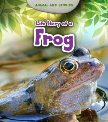 Life Story of a Frog, Paperback / softback Book