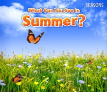 What Can You See In Summer?, Paperback / softback Book