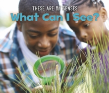 What Can I See?, Paperback Book