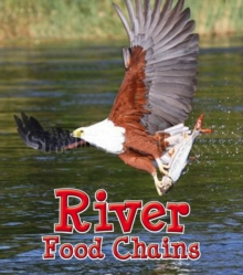 River Food Chains, Paperback / softback Book