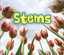 All About Stems, Hardback Book