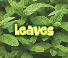 All About Leaves, Paperback Book