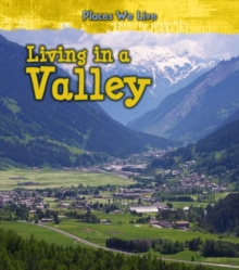Living in a Valley, Paperback / softback Book