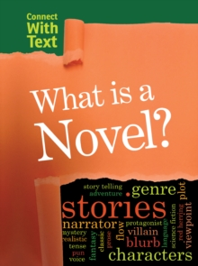 What is a Novel?, Paperback Book