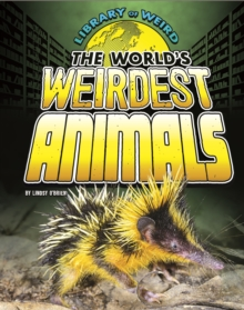 The World's Weirdest Animals, Paperback Book