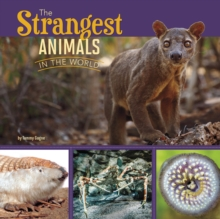 The Strangest Animals in the World, Paperback Book