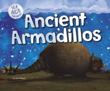Ancient Armadillos, Paperback / softback Book