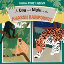 A Day and Night in the Amazon Rainforest, Paperback Book