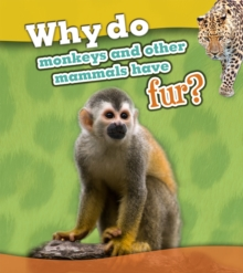 Why Do Monkeys and Other Mammals Have Fur?, Paperback Book