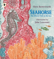 Seahorse: The Shyest Fish in the Sea, Paperback Book