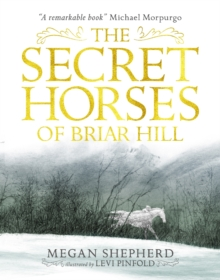 The Secret Horses of Briar Hill, Paperback Book
