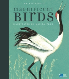 MAGNIFICENT BIRDS, Hardback Book