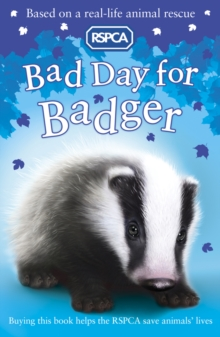 Bad Day for Badger, Paperback Book