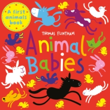 Animal Babies, Paperback / softback Book
