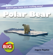 Polar Bear, Paperback Book