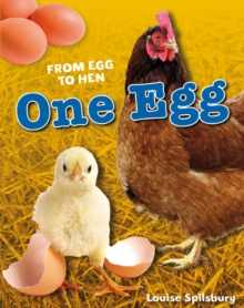 One Egg : Age 6-7, Average Readers, Paperback Book