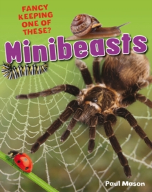 Minibeasts : Age 5-6, Average Readers, Paperback Book