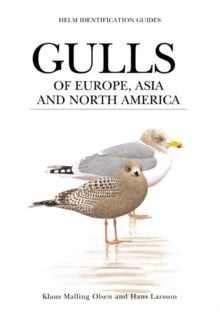 Gulls of Europe, Asia and North America, PDF eBook