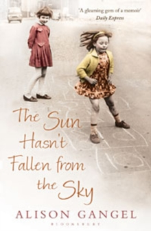 The Sun Hasn't Fallen From the Sky, Paperback / softback Book
