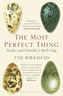 The Most Perfect Thing : Inside (and Outside) a Bird's Egg, Paperback Book