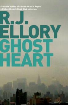 city of lies ellory r j