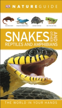 Nature Guide Snakes and Other Reptiles and Amphibians : The World in Your Hands, Paperback / softback Book