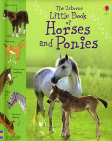 Little Book of Horses and Ponies, Hardback Book